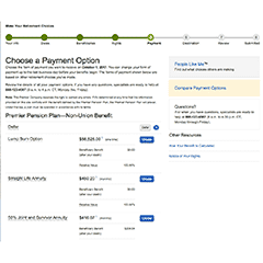Step 5 - Choose a Payment Option